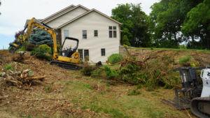 Removing Overgrown Landscape