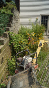 Timber retaining wall - before